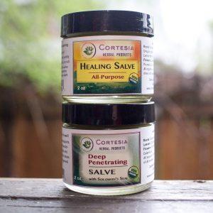 Organic Salve Variety 2-pack