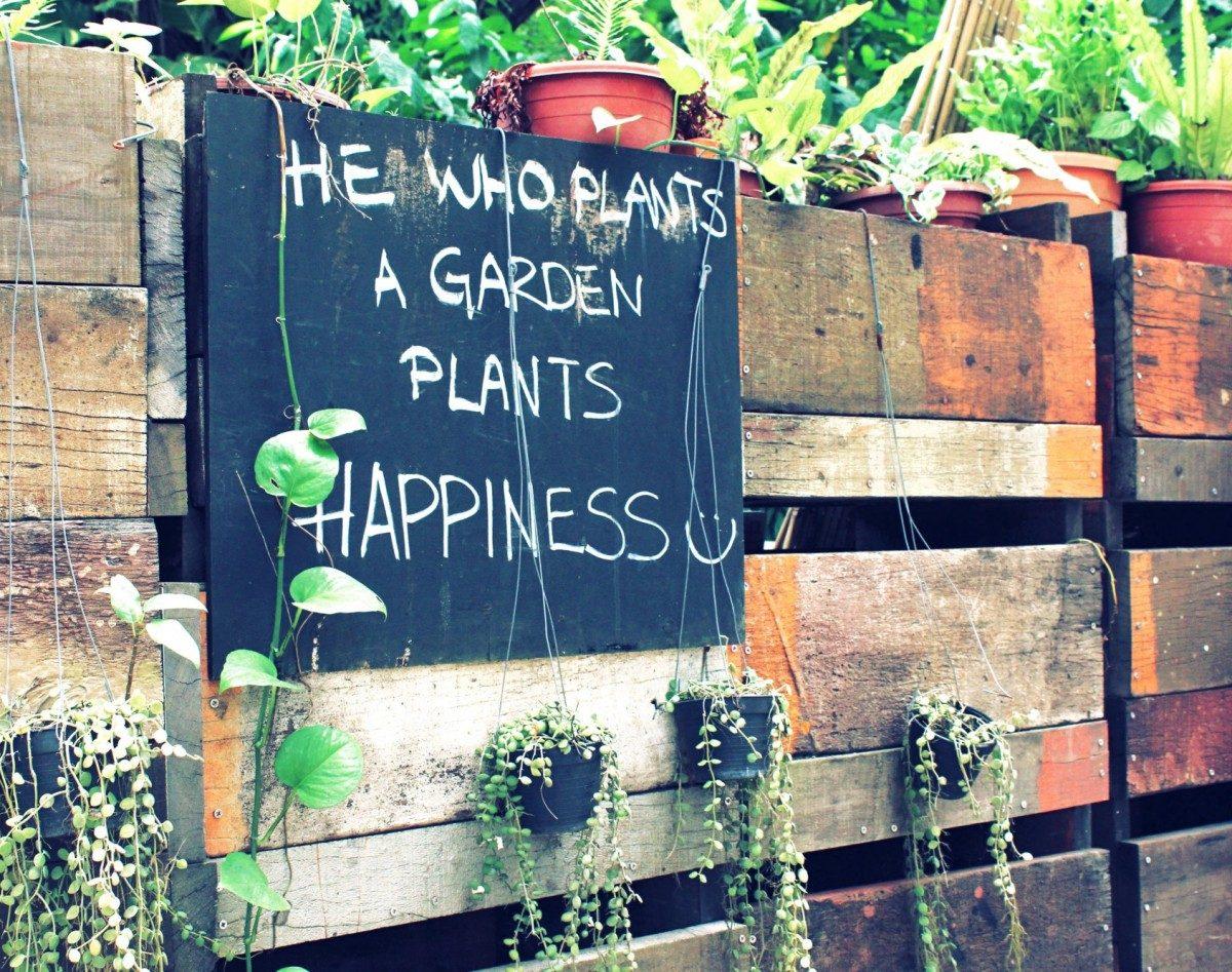 garden happy