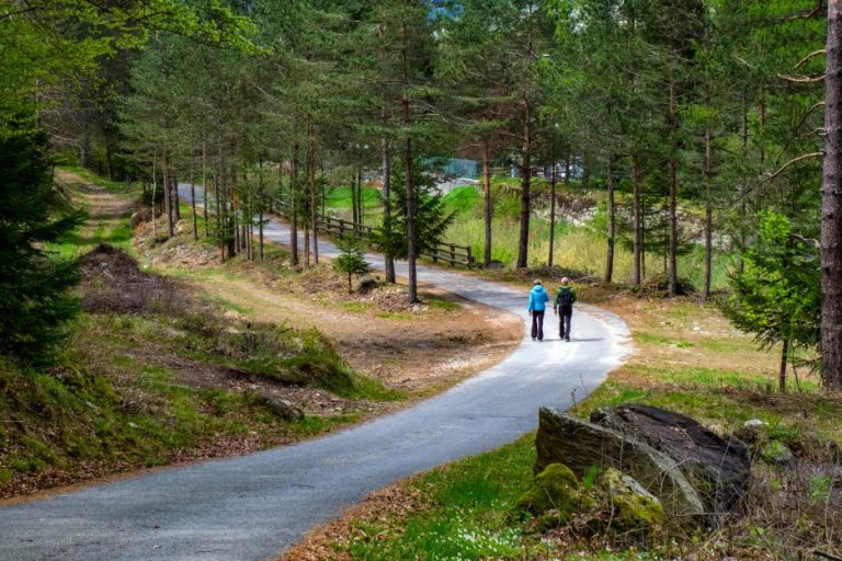 couple-walking-in-nature
